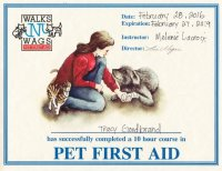 Pet First Aid Certificate