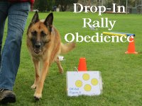 Drop-In Rally Obedience